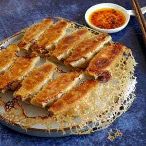 A plate of chicken potstickers