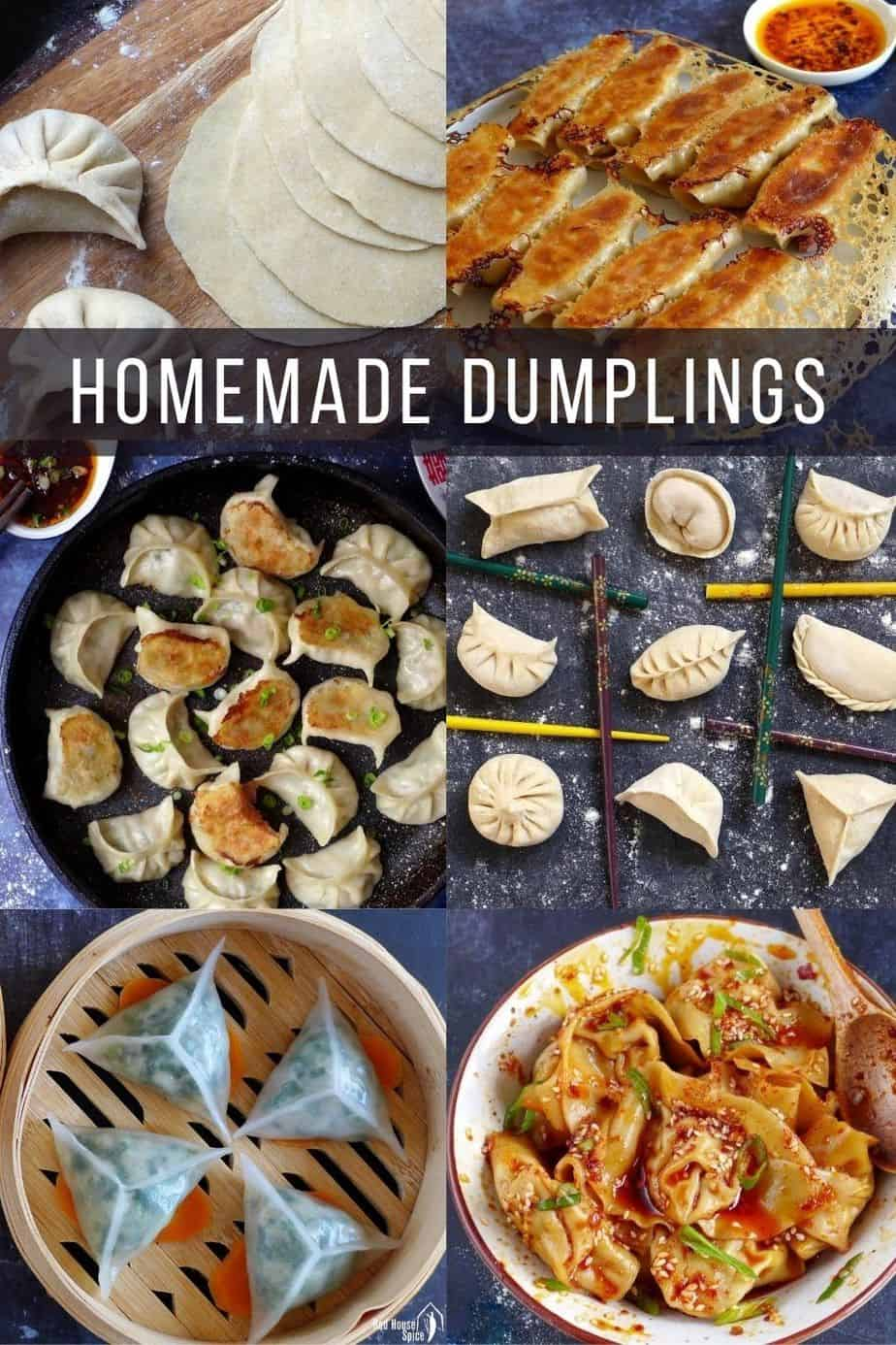 a collection of Chinese homemade dumplings