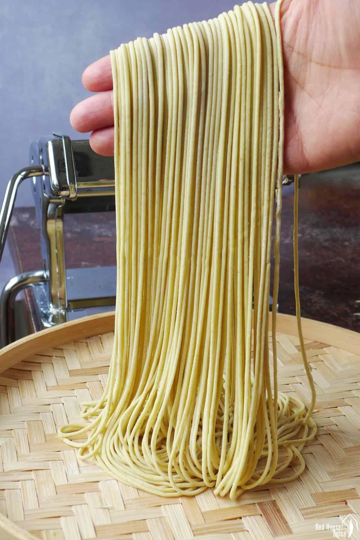 a hand holding fresh alkaline noodles